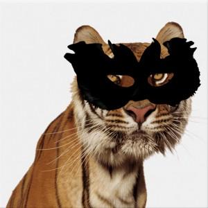 Vachement bien déguisé ce tigre, je vous tire mon Chap-eau
