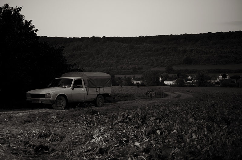 rockinthebarn-paysage